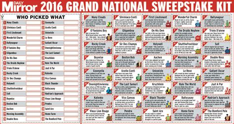 grand national - Grand National 2016 Sweepstake