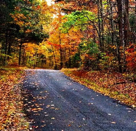 of kentucky colors best places to see kentucky fall foliage official