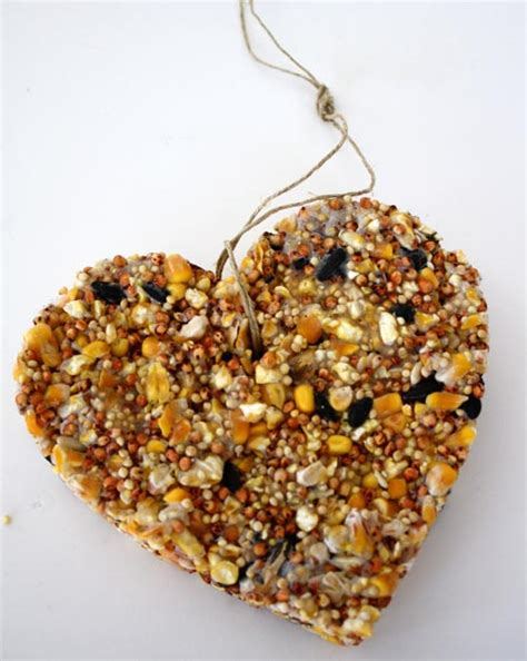 heart shaped bird feeder diy alpha mom