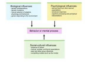 prologue the story of psychology psychology 7a with