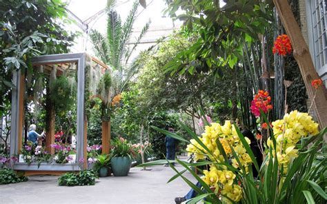 u s botanic garden washington d c 10 amazing indoor