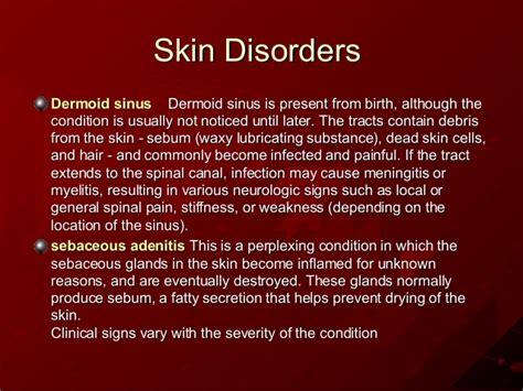 shih tzu ear infection home treatment shih tzu skin allergies insomnia