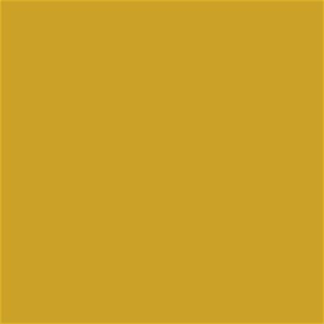 pin gold pantone color on