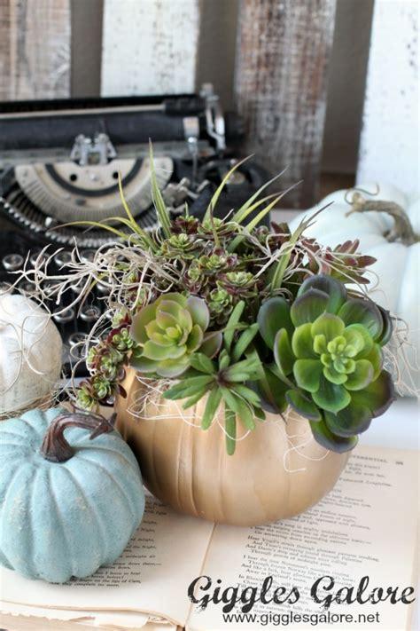 succulent planter diy diy succulent pumpkin planter giggles galore