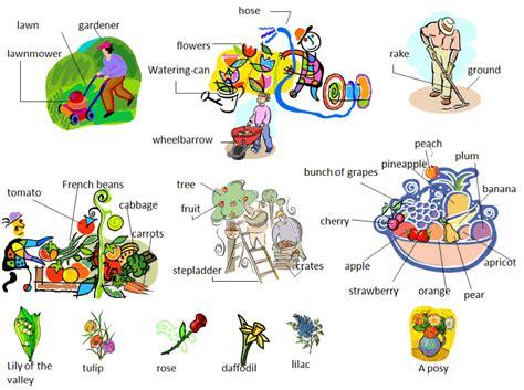 Gardening Verbs In The Garden Vocabulary