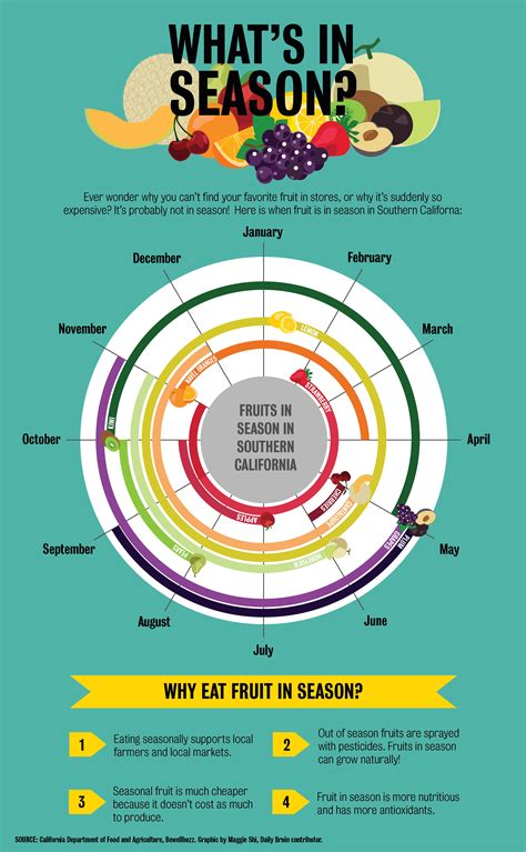 fruit by season graphic when are your favorite fruits in season daily