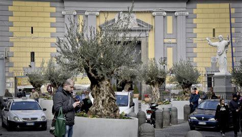 giardino dei getsemani e montesanto diventa il giardino dei getsemani 14 piante