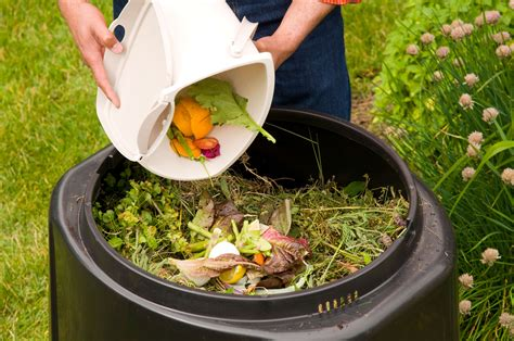 compost cuisine waste treatment is now must in all big offices and housing