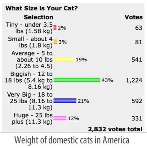 cat weight chart