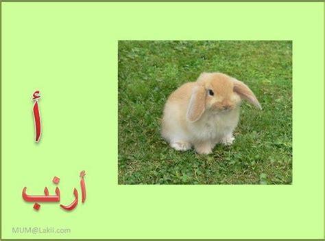 klmat tbda bhrf alalf google search letter alif
