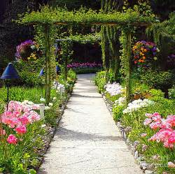 Flower In Garden Pictures Flower Garden Weneedfun