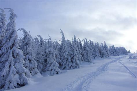 winter images brocken winter landscape photos diagrams topos