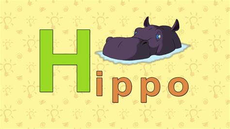 5 Letter Words Hippo hippo zoo alphabet letter h animation