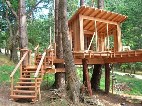 treehouse design software pete nelson s tree houses let homeowners live the high