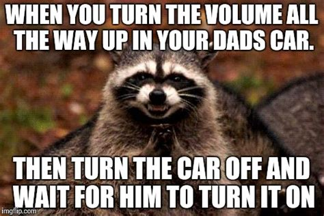 Meme Generator Raccoon - evil plotting raccoon memes imgflip