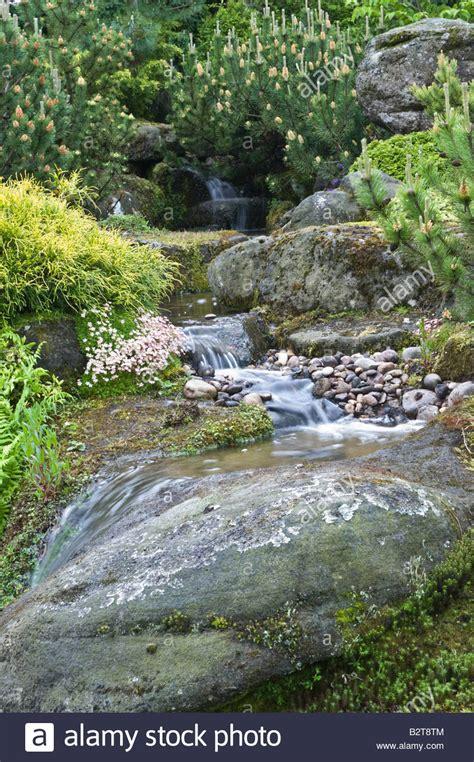 rock garden pond waterfall shrubs stock photos rock