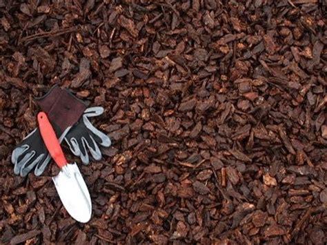 bark mulch chips best buy in town portland or