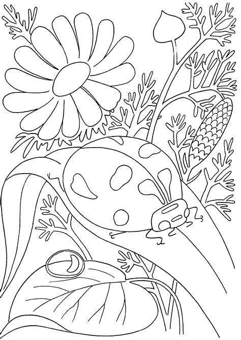 garden insects coloring page free i for insects coloring pages