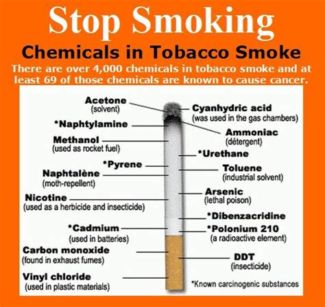 printable quiz about smoking pinterest the world s catalog of ideas