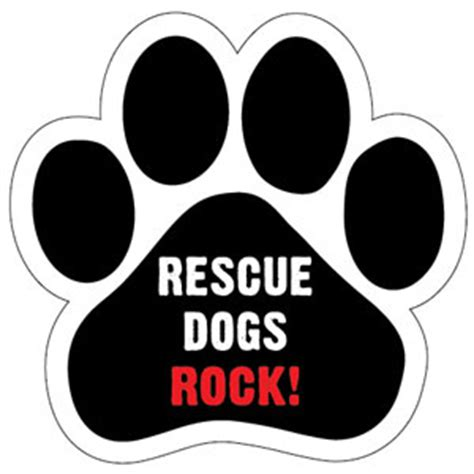 rescue dogs rock eagle bird dogs for the week of 9 13 15