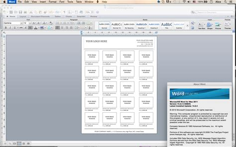 microsoft word catalog template custom catalog custom line sheet line sheet design