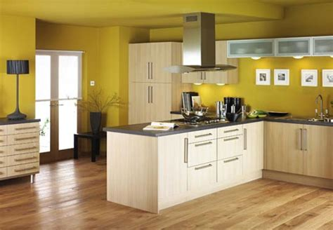 paint ideas for kitchen cupboards