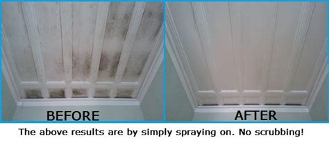 how to clean mould from bathroom ceiling easy way to clean mould off walls ceilings curtain