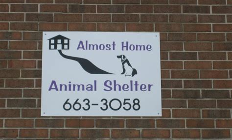 almost home animal shelter