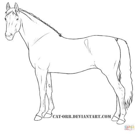 warmblood mare coloring online super coloring