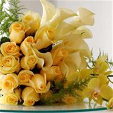 significato dei fiori amicizia fiori dell amicizia significato fiori
