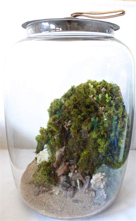 332 best garden terrariums images on pinterest gardening plants and garden terrarium