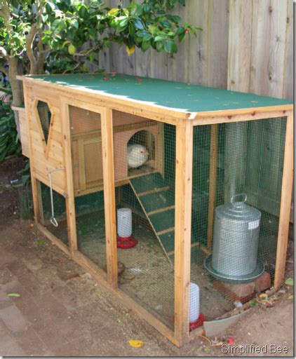 backyard chicken coops plans backyard chicken coop