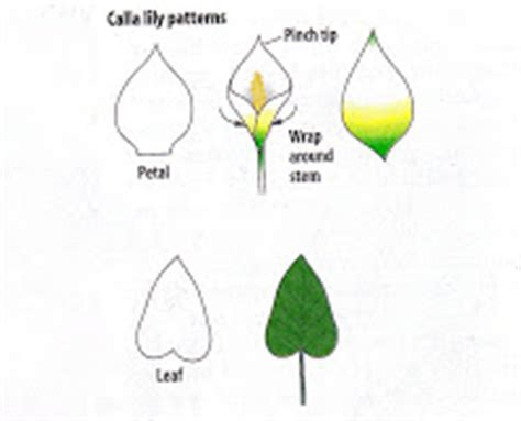 calla lily paper flower pattern 187 patterns gallery
