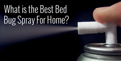 bed bug spray  home