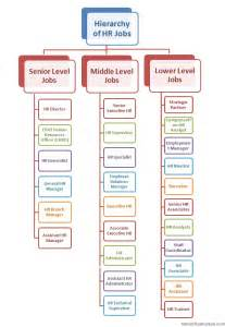 Office Titles Human Resource Management Hr Hierarchy Structure