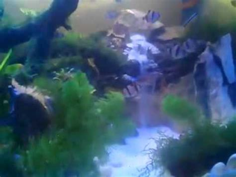 Lu Aquarium Dalam Air unik miniartur air terjun di dalam aquarium