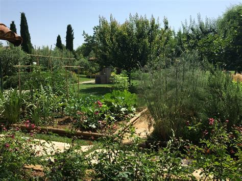 giardino angeli alla scoperta giardino il giardino degli angeli