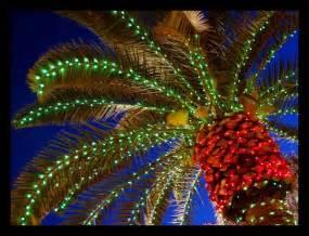 lights in south florida naples fl best lights display park