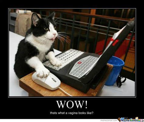 Meme Laptop - cat computer by iforger meme center