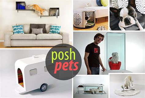 Contemporary Accessories For Your Pet by Modern Pet Furniture Accessories For Design