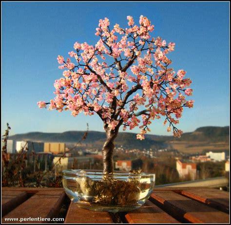 Bonsai Selber Machen 4468 perlentiere und mehr jalailas perlentierwelt