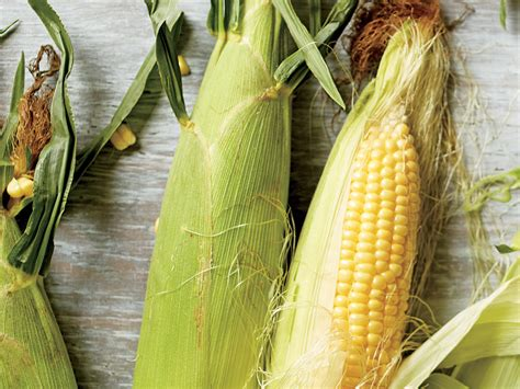 Corn L by Guide To Corn Cooking Light