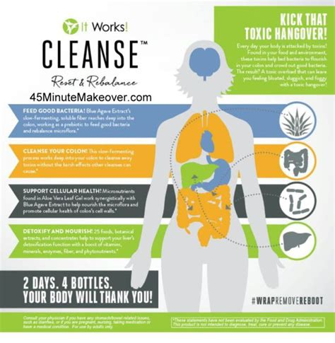 Detox Shoo That Works by Toxic Hangover New Cleanse From It Works 45 Minute