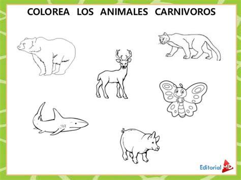 imagenes de animales carnivoros para colorear animales carnivoros herbivoros y obnivoros