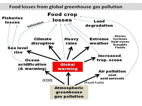 changing food climate food science page