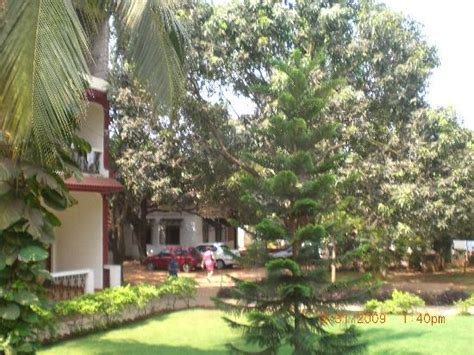 Seaview Cottages Goa by Sea View Cottages Goa Baga Hotel Reviews Photos Rate