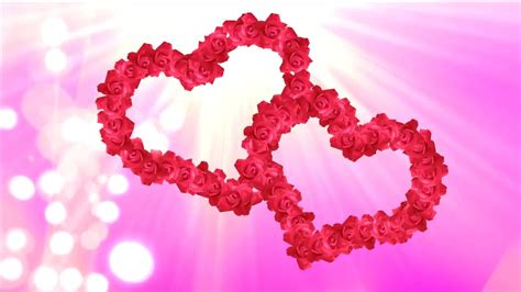 animated roses hearts video for wedding films with shining