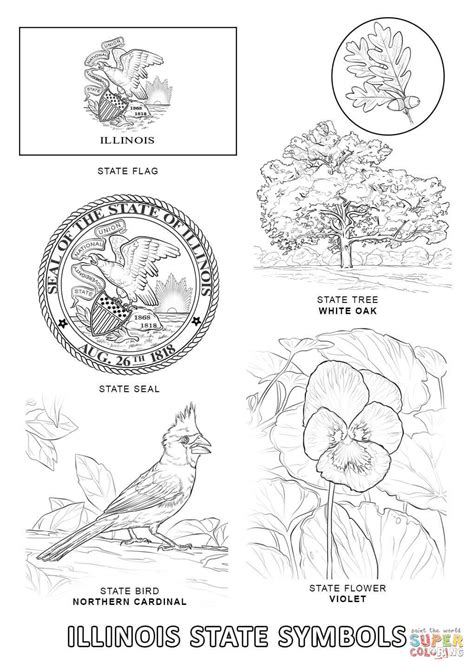 illinois state symbols coloring page free printable