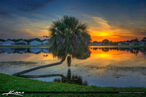 Wonderful Where Is Palm Beach Gardens Fl #2: Sunset-Lake-with-Palm-Tree-Palm-Beach-Gardens-Florida.jpg