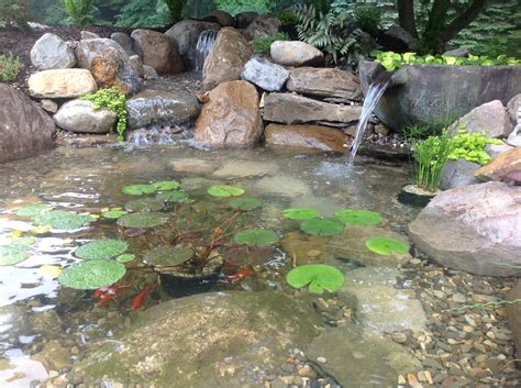 backyard frog pond backyard pond rejuvenation using fountainscapes a frog s